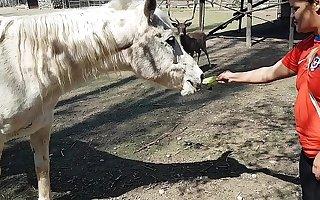 Fiquei toda molhada ao ver o tamanho carry out membro de um cavalo !!! Queria que meu namorado fosse assim !!! Paty Bumbum, El Toro De Oro